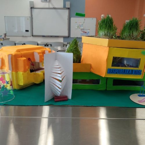 School of the future / Respublica Kids school / 1er Prix