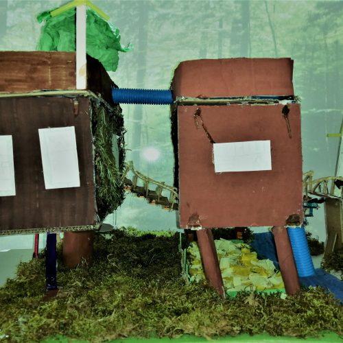 Habiter la forêt - CM2 / École Élémentaire Serpentine, Colmar / 1er Prix
