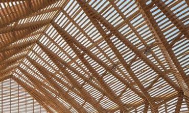 Rohstoff Natur – Wald und Boden als Material für Architektur