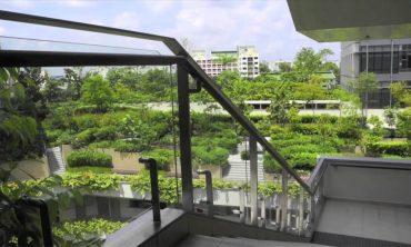 Singapore Biophilic City von Peter Newman, 2021, 44′ (auf Englisch)